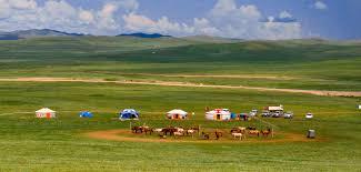 The Mongolia Society